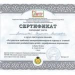 amchenceva-sertif6