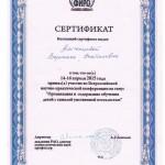 amchenceva-sertif7