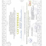 Kiseleva-sertif3