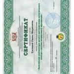 Kiseleva-sertif8