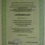 lemesh-sertif10