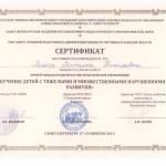 lemesh-sertif6