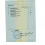 novikova-diplom3