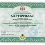 novikova-sertif8