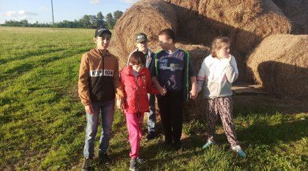 Радости поездки на ферму